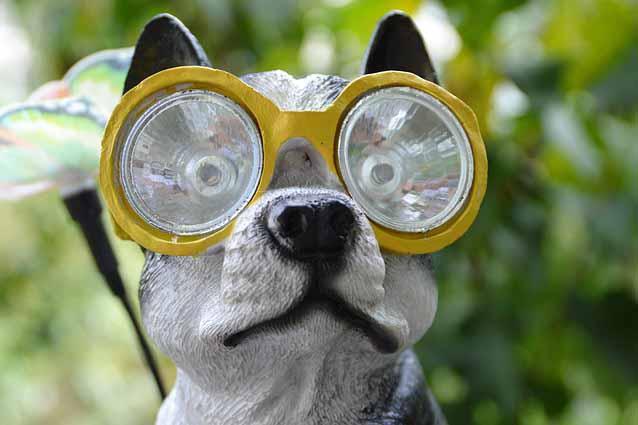 Arten von Taucherbrillen